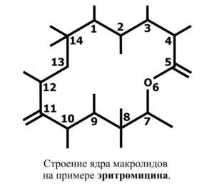 Формула макролидов